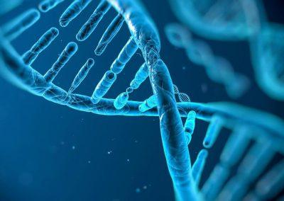 4B – Busqueda de las causas genéticas de las diferencias entre individuos