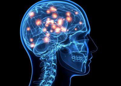 30A – Neuropsicología y vulnerabilidad social: Cerebros en crecimiento