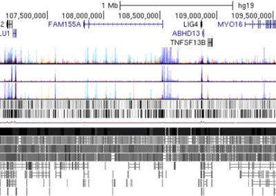 33B – Analizando la expresión de las Células