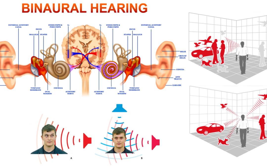 31A – Investigando la percepción binaural