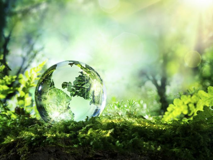 12D – Medioambiente, ¿Y si lo dejamos entero?