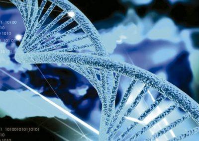 12H – Haciendo Química de Proteínas