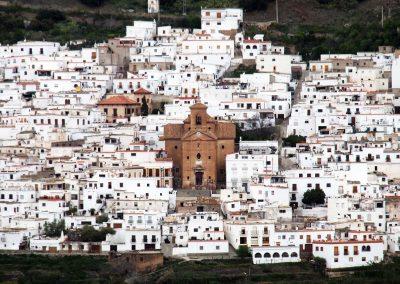 22C – El mundo rural andaluz y la importancia de la Política Agraria Europea en su desarrollo